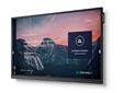 NEC Display为商教市场发布新款协作套件